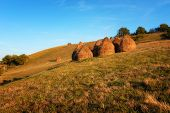 Hay Piles On Field At Countryside In Autumn. Heap Of Haystack With Green Grass And Trees On Backgrou poster