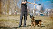 A Man Training His German Shepherd Dog Outdoors - Incite The Dog On The Grip Bait poster
