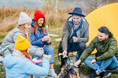 Best Friends Cooking Marshmallows On Bonfire On Hike Near The Lake On Autumn Holidays. Five Frozen H poster