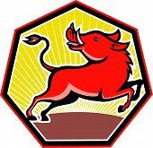 picture of razorback  - Illustration of wild hog pig razorback set inside septagon shape on isolated background - JPG