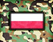 stock photo of ami  - Amy camouflage uniform with flag on it Poland - JPG