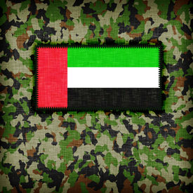 pic of ami  - Amy camouflage uniform with flag on it UAE - JPG