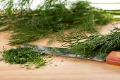 Chopped Fresh Dill