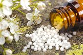 foto of placebo  - alternative medicine and homeopathy with herbal pills - JPG
