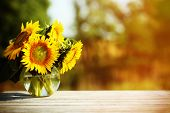 foto of sunflower  - Beautiful sunflowers on table on bright background - JPG