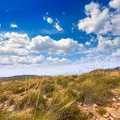 foto of manga  - Calblanque beach Park near La Manga Mar Menor in Murcia Spain - JPG