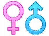 image of hetero  - Male and female gender symbols of blue and pink colors on white background - JPG