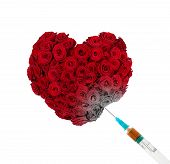 stock photo of kill  - Drug injection into heart shaped bunch of roses - JPG
