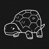 stock photo of tortoise  - Tortoise Doodle - JPG