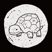 foto of tortoise  - Tortoise Doodle - JPG