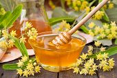 stock photo of linden-tree  - Linden honey with drizzler and fresh linden flowers - JPG