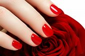 Manicure. Beautiful Manicured Womans Hands With Red Nail Polish poster