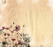 flower old worn paper texture background