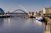 foto of tyne  - River tyne showing its bridges and leisure boats - JPG