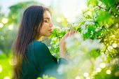 Beauty young woman enjoying nature in spring apple orchard, Happy Beautiful brunette girl in Garden  poster