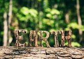 EARTH writing made from wooden letters, standing in the forest. Earth Day. Save the Earth. poster