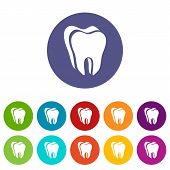 Canine Tooth Icon. Simple Illustration Of Canine Tooth Vector Icon For Web poster