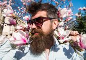 Guy Looks Cool With Stylish Sunglasses. Man With Beard And Mustache Wears Sunglasses On Sunny Day, M poster
