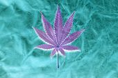 Marijuana Leaf. Inverted color version of a Marijuana Leaf on a Leather Background. Backgrounds and  poster