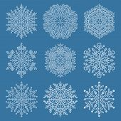 Set Of Snowflakes. White Winter Ornament. Snowflakes Collection. Snowflakes For Backgrounds And Desi poster