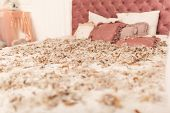 Chic Retro King Size Bed Strewn With Feathers From The Pillow. Pillow Fight In The Room poster