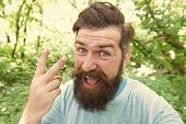 Brutal Male Leisure. Summer Fun. Bearded Guy In Park Forest. Bearded Hipster. Hipster With Long Bear poster