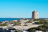 a view of the medieval tower Torre de Ses Portes in Ibiza Island, Spain, and the neighboring Forment poster