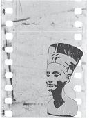 stock photo of nefertiti  - vector head of Nefertiti  - JPG