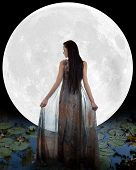 stock photo of moon-flower  - Water fairy walking into the moon - JPG
