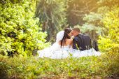 image of bridal veil  - Wedding shot of bride and groom in park - JPG