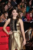 LOS ANGELES - NOV 18:  Sarah Hyland at the The Hunger Games:  Catching Fire Premiere at Nokia Theate