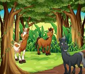 Illustration of a forest with three smiling horses