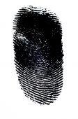image of dna fingerprinting  - Fingerprint with Black Ink on White Paper - JPG