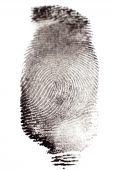 foto of dna fingerprinting  - Fingerprints with Black Ink on White Paper - JPG