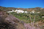 picture of pueblo  - General view of whitewashed village  - JPG
