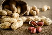 stock photo of groundnut  - Peeled peanut on well peanuts in background - JPG