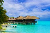 stock photo of kuramathi  - Water bungalows on a tropical island  - JPG
