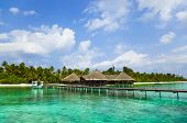 picture of kuramathi  - Water cafe on a tropical beach  - JPG
