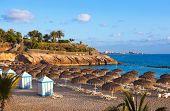picture of canary  - Beach Las Americas in Tenerife island  - JPG