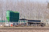 foto of silos  - agricultural silos for the storage of feed - JPG