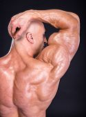 picture of bodybuilder  - Bodybuilder is posing showing his muscles - JPG