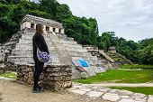 stock photo of mayan  - View of Historic Mayan Site - JPG
