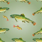 stock photo of brook trout  - Seamless  texture   brook trout  predator catch a fish  vector illustration - JPG