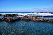 stock photo of atlantic ocean beach  - Dry Lava Coast Beach in the Atlantic Ocean - JPG