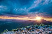 image of mountain sunset  - Carpathian mountains summer  sunset landscape with sun  and alpine pines - JPG