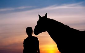 foto of colt  - The girl near to a horse standing in front of a beautiful sunset - JPG