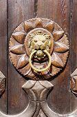 foto of wooden door  - Lion head Door knocker on new wooden door - JPG