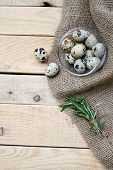pic of quail  - Quail eggs a bunch of rosemary and burlap are on the unpainted wooden background - JPG
