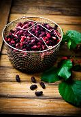 stock photo of mulberry  - the berries of an organic mulberry picked in a garden - JPG