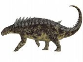 picture of herbivorous  - Hungarosaurus was an ankylosaur herbivorous dinosaur that lived in Hungary during the Cretaceous Period - JPG